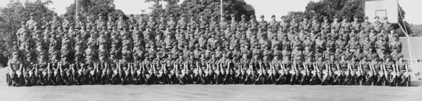 Victor Company Royal New Zealand Infantry Regiment Vietnam ...